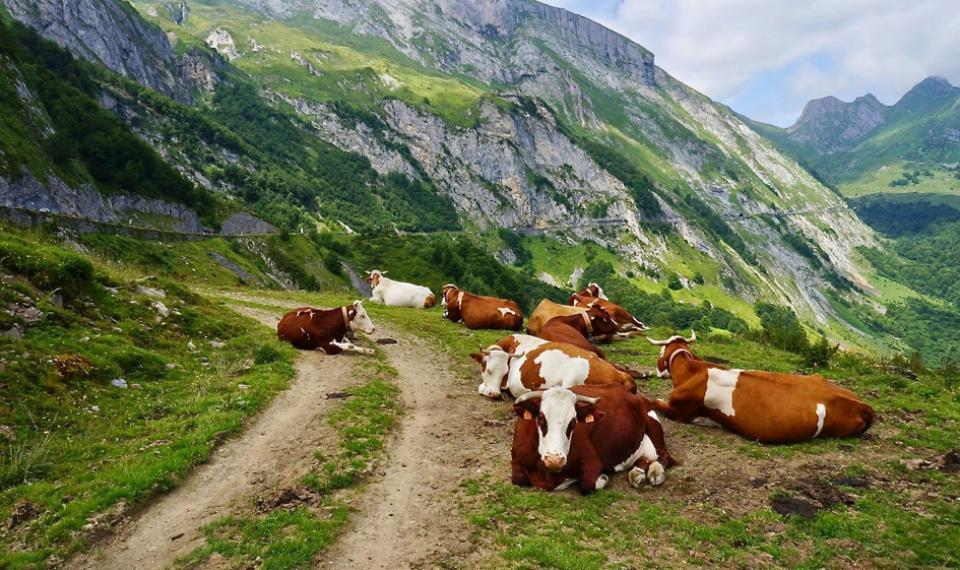 La traversée des Pyrénées en 45 jours