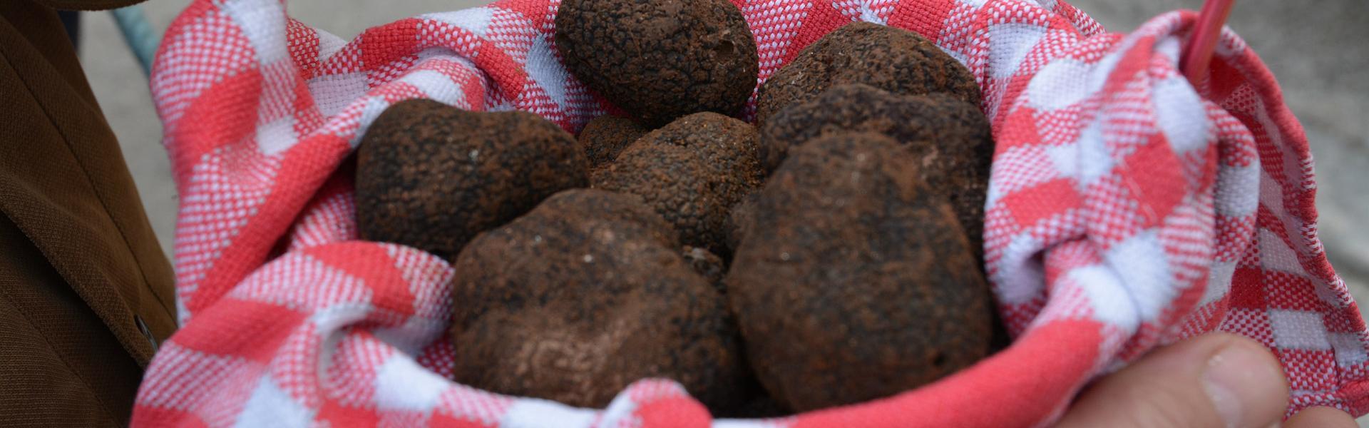 Marché aux truffes de Lalbenque