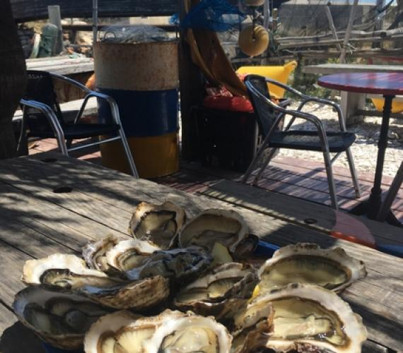 Plateau d'huîtres de Leucate