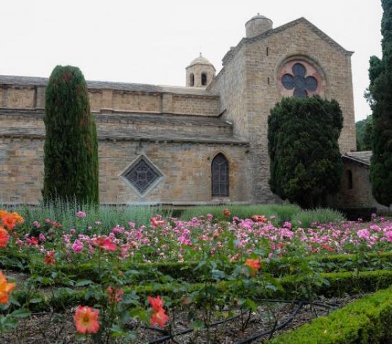 roseraie abbaye de Fontfroide