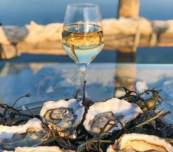 Huîtres et Picpoul de Pinet