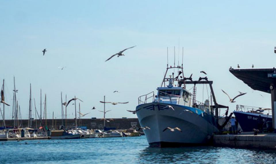 Le port de Sète ©la fille de l'encre - blog