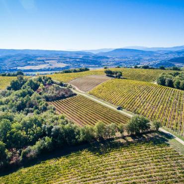 L'Aude, les vignobles du Pays Cathare