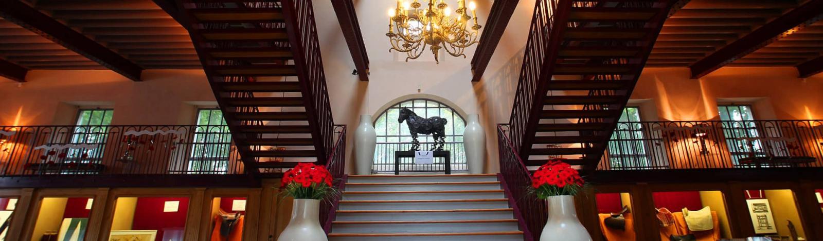 Haras Maison du cheval