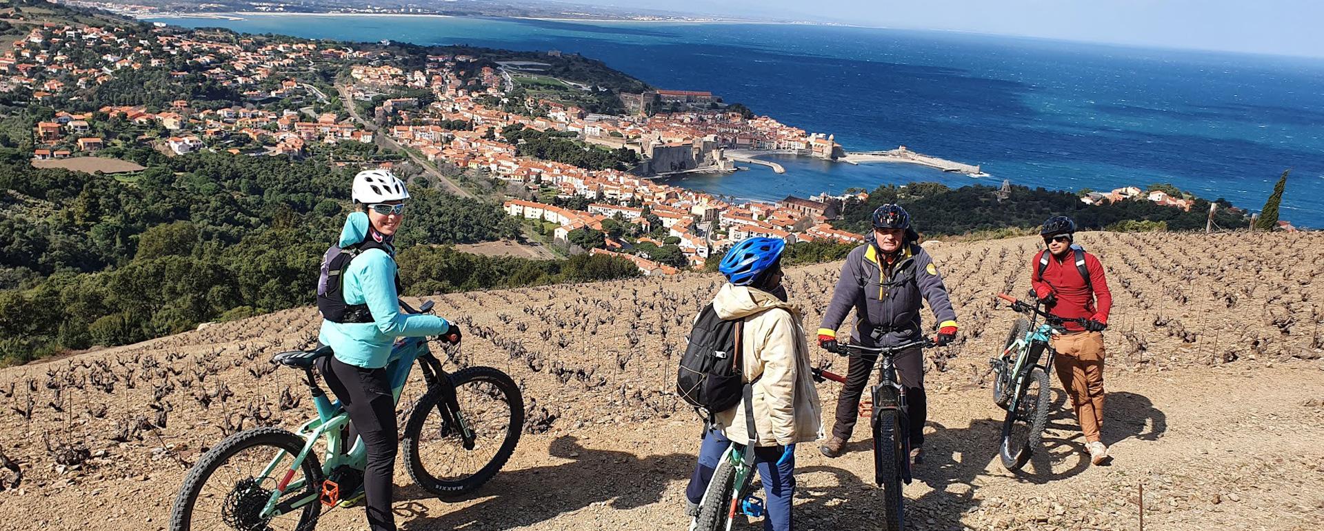 Vélo électrique dans les vignes - Collioure- Pyrénées-Orientales