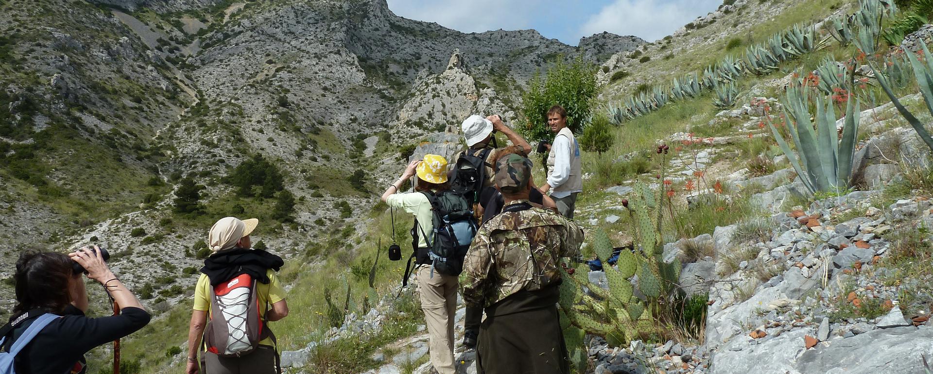 Observation des oiseaux en migrationParc naturel de la Narbonnaise