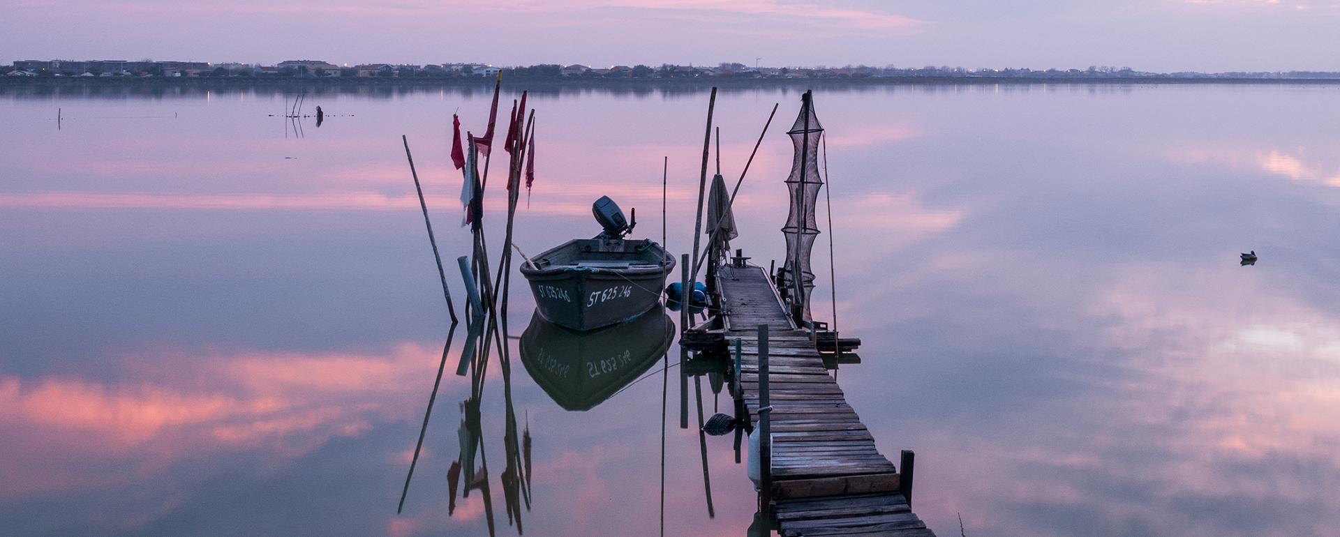 Montpellier et les secrets de l'étang de Thau