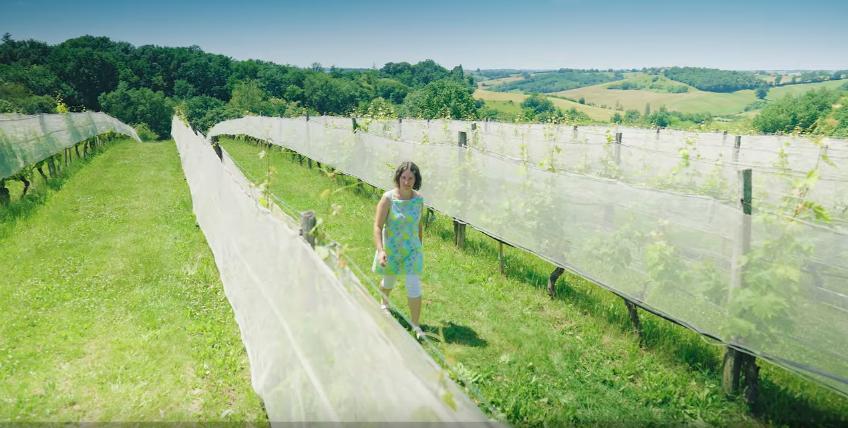Vidéo Grand Site Occitanie Moissac Lauzerte Auvillar