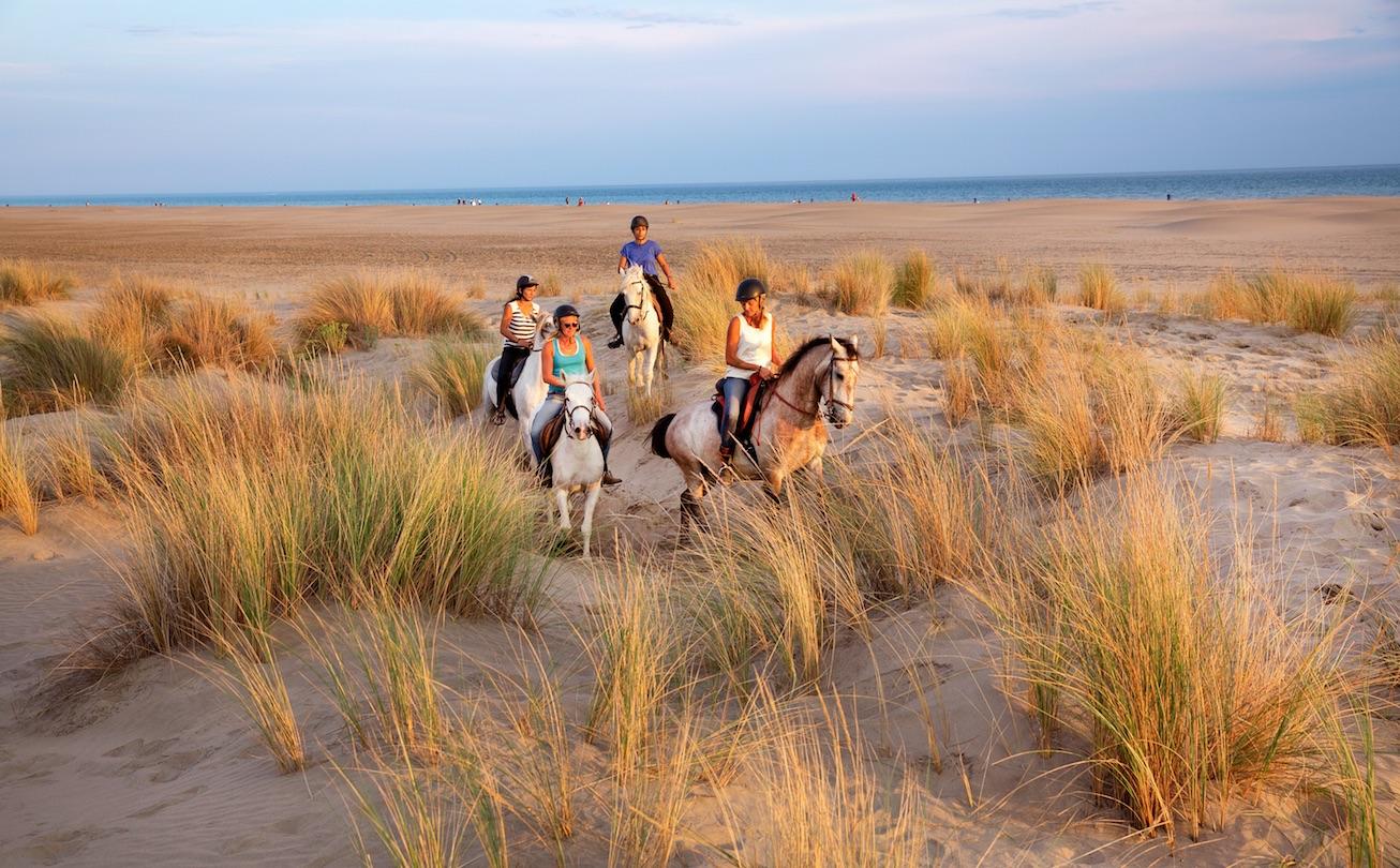 Promenade à cheval sur la plage de l'Espiguette (petite Camargue)