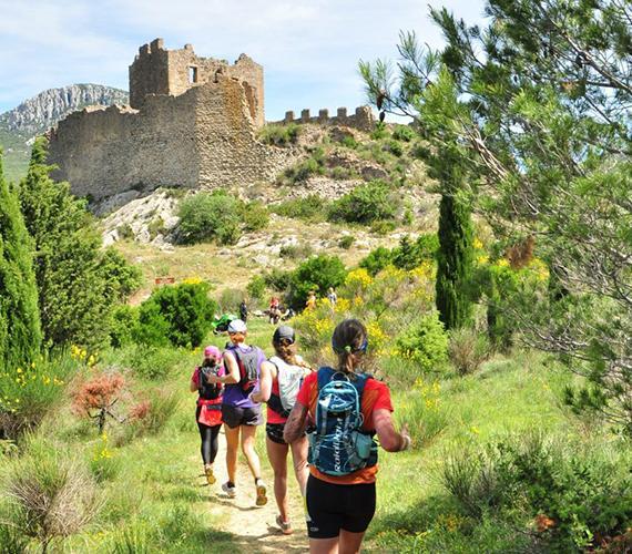 Les châteaux cathares en ligne de mire