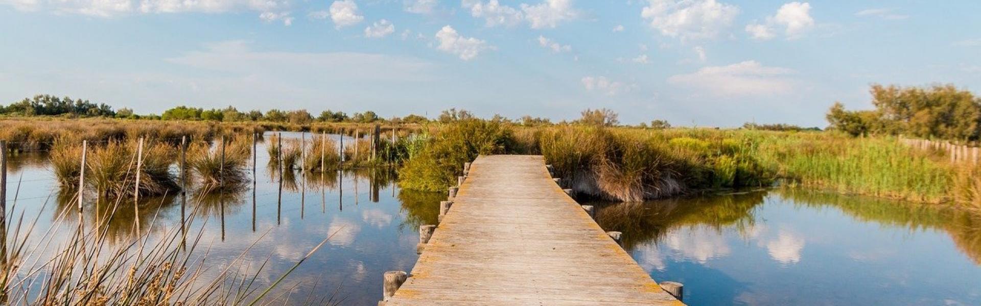 Ponton sur les étangs en Camargue panorama